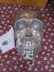 Настенный декор Череп Skull 40cm 38383 серебро Invicta